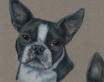 One of a Kind Custom Dog Portrait Drawing