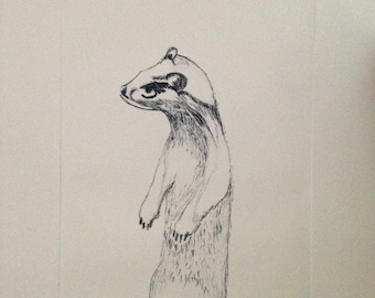 Menacing weasel copperplate etching, measures 42 x 29.7 cm and hand printed on German 220 GSM cotton rag paper