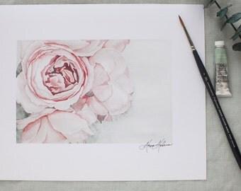 Watercolor Peonies in Bloom Painting   Watercolor Fine Art   8x10   Peony painting