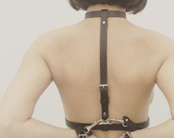 everyday harness