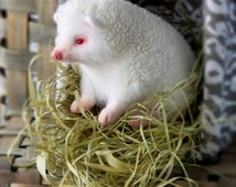 Albino hedgehog -READY TO SHIP- Needle felted hedgehog - Needle felted animal - Miniature sculpture Handmade Felt toy - Hedgehog as a gift