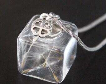 Dandelions cube necklace, chain of desire, Talisman