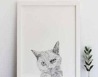 Grey Cat Print