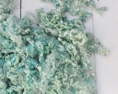 Hand Dyed Teeswater Wool Locks - Seafoam - 3.1 ounces