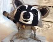 Orphan the Needle Felted Raccoon