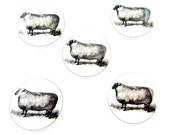 """5 Vintage Image Sheep Buttons.  3/4"""" or 20 mm round.  Handmade Buttons.  Sheep Novelty Buttons.  Craft Buttons."""