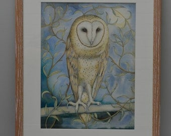 Barn Owl Amongst the Willow. Framed watercolour painting.