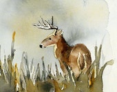 Deer Art / Watercolorb PRINT / Boy's room / Bambie / Child decor / Children room decor / Deer painting / Animal art / Brown / 10 x 10 N