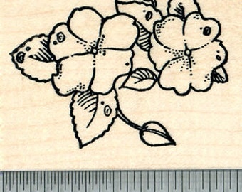 Impatiens Flower Rubber Stamp, Summer Floral Series, Touch me not H30703 Wood Mounted