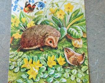 Vintage Postcards, Racey Helps Postcards, Animal Illustrations, Vintage Cards, Made in England, Hedgehog Image, Mouse Illustration Whimsical