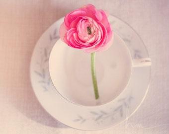 ranunculus still life, laundry room decor, pink decor, ranunculus in tea cup, romantic print, shabby, ranunculus print, large wall art