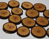 Handmade Ash Tree Branch Wood Buttons, 5/8 Inch (16mm) to 13/16 Inch (21 mm), Set of 16