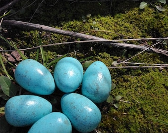 Hand painted robins eggs .. speckled six