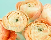 Flower Photography, Orange, Blue, Ranunculus, Pastel Decor, Bedroom Wall Art, Peach, Yellow, Girl Nursery Decor