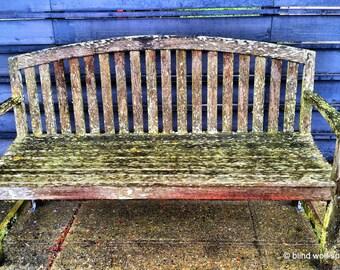 Wood Bench, Mossy Bench, Fine Art Photo