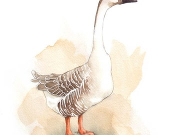"Brown Chinese Goose - Original 8"" x 10"" Painting"