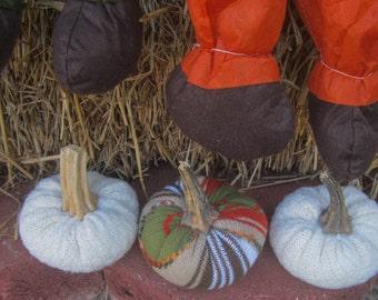 Halloween/Fall Sweater Pumpkins with real Pumpkin Stalks