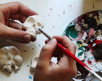 6 DIY Ceramic Skulls w/ Optional Paint Kit