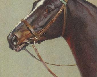 The Rivst D-ring Bay - Vintage 1940s Artist-signed Horse Postcard