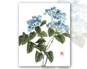 "8 x 10 Watercolor Chinese Brush Painting Print:""Blue Hydrangea"""