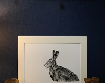 Hare - Japanese Ink Art Print from an original fine line ink drawing