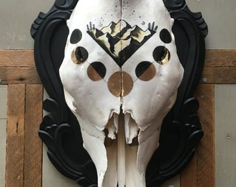 Golden Spirit || Mounted Cow Skull