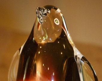 Glass Penguin