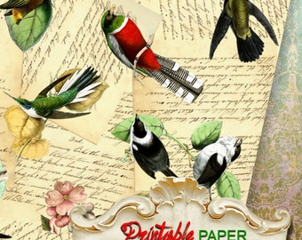 BIRDs  - Printable wrapping paper for Scrapbooking, Creat, Gifts - Download and Print