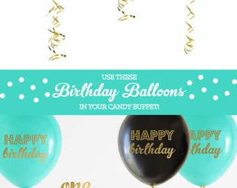 Boy First Birthday Decorations Baby Boy First Birthday Theme Party First Birthday Boy Decoration Little Boy Birthday Party Ideas (EB3110BIR)