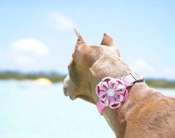 Collar flower, Dog collar, Flowers for dogs, Dog Collar Flower, Dog Collar Flowers, Dog Bow, Wedding Flower, Dog Wedding Flower, Mia, Dog