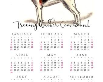 Treeing Walker Coonhound 2017 yearly calendar