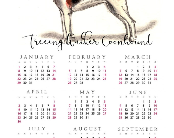 Treeing Walker Coonhound 2017 yearly calendar