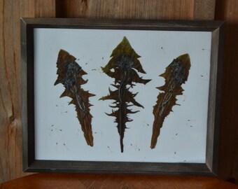 "dandelion art, natural leaf art, dandelion wishes, rustic wall decor, cottage chic decor, home decor, Title: ""Dandelion Wishes"""