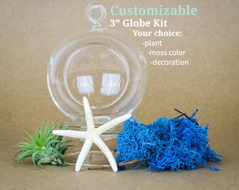 "3"" globe air plant / tillandsia terrarium kit with your choice of moss, plant and decoration"