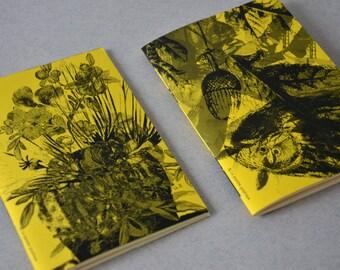 Book Flowers 2