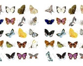 Butterfly WaterSlide Decals, Decorate Magnets, Candles, Soap, Glass, Home Decor, Furniture, Ceramics, Jewelry, Craft Projects