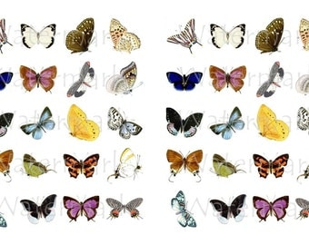 Butterfly WaterSlide Decals, Decorate Magnets, Candles, Soap, Glass, Home Decor, Furniture, Ceramics, Jewelry, Craft Projects, Scrapbooks