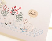 White Cat Birthday Card (Set of 2)
