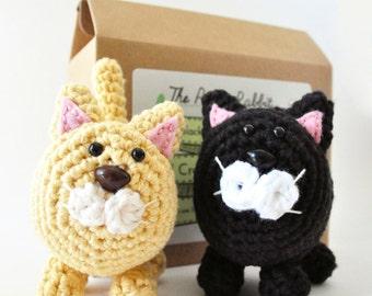 Cat Crochet Kit, Craft Kit, DIY Kit, Learn to Crochet, Cat Amigurumi Pattern