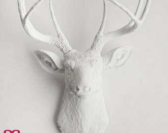 white deer head wall mount, The Templeton by White Faux Taxidermy | resin deer head