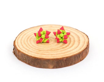 Handmade Cactus Polymer Clay Jewelry Earrings: Succulents in Pink and Green