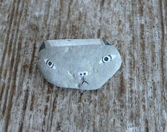 Beach Stone Cat