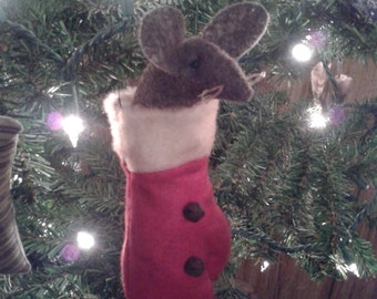 Primitive mouse in mitten