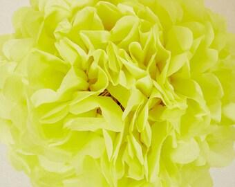 Limon Paper Pom Pom