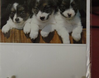 Three Pups Card