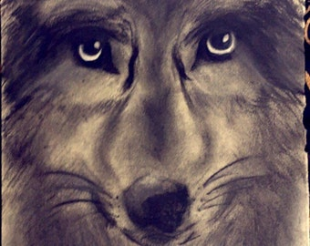 Original Wolf Charcoal Drawing