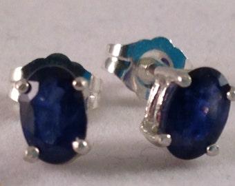 Rich Blue Sapphire Earrings