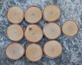 10 White Birch Disks