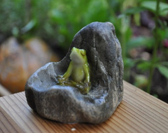 Mini-Yoga Frog Meditating in Rock