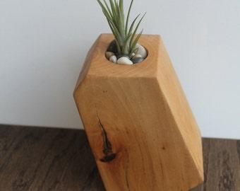 Wooden Aiplant Holder